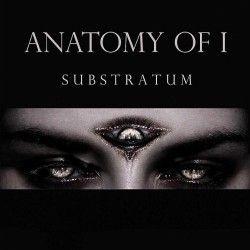 """Anatomy of I - """"Substratum""""..."""